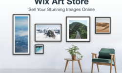 Wix Art Store Overview – Why a Website is Important for your Business
