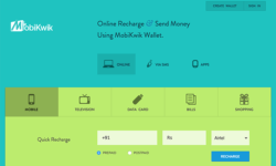Mobile Wallet: A boon for users and service providers